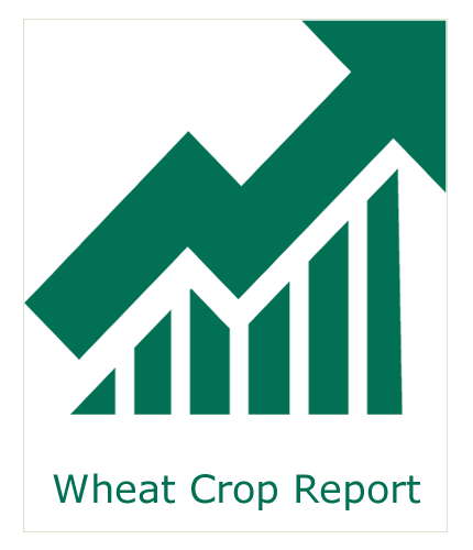 Wheat Acreage
